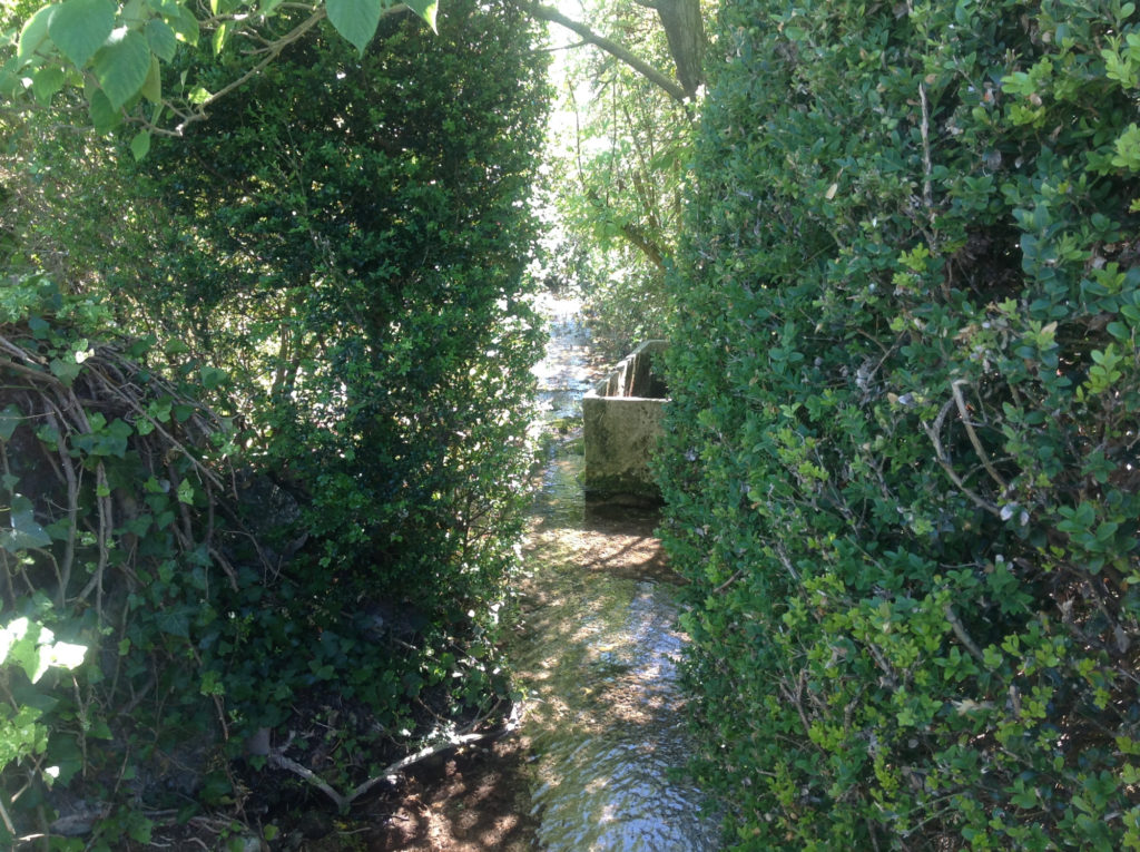 La fontaine d'ananda-moulin du viretard8